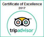 trip-advisor-excellence